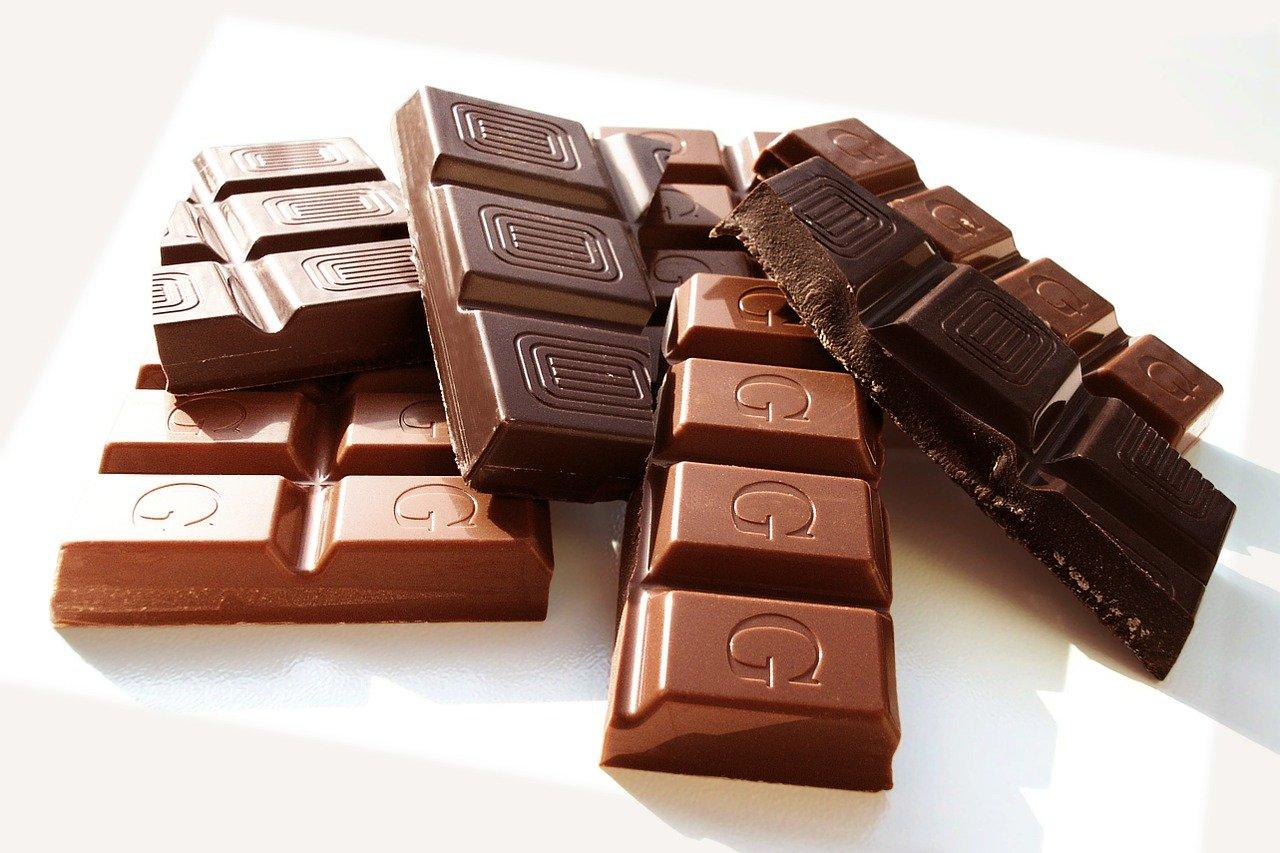 danger chocolat chien